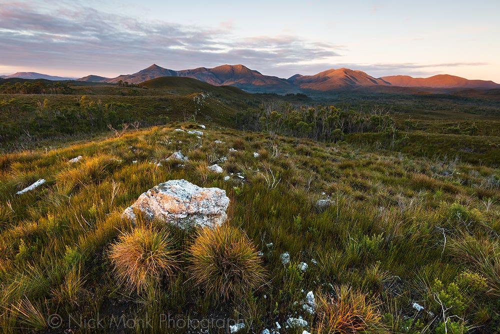 Norfolk Range: Nick Monk