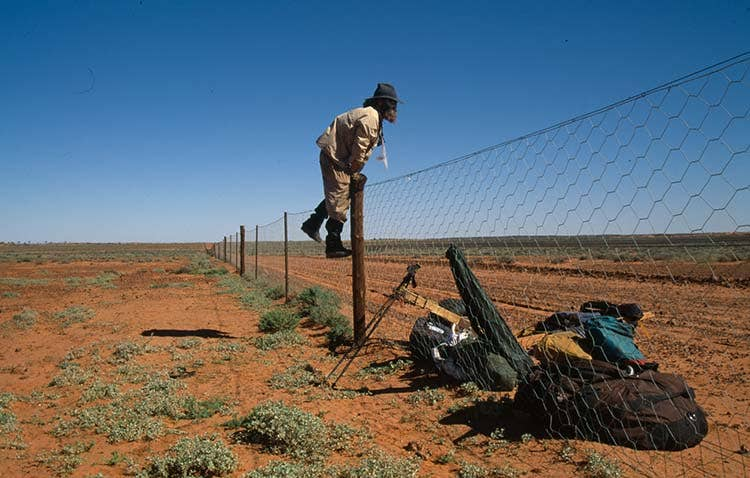 Jumping a dingo fence during his traverse across Australia