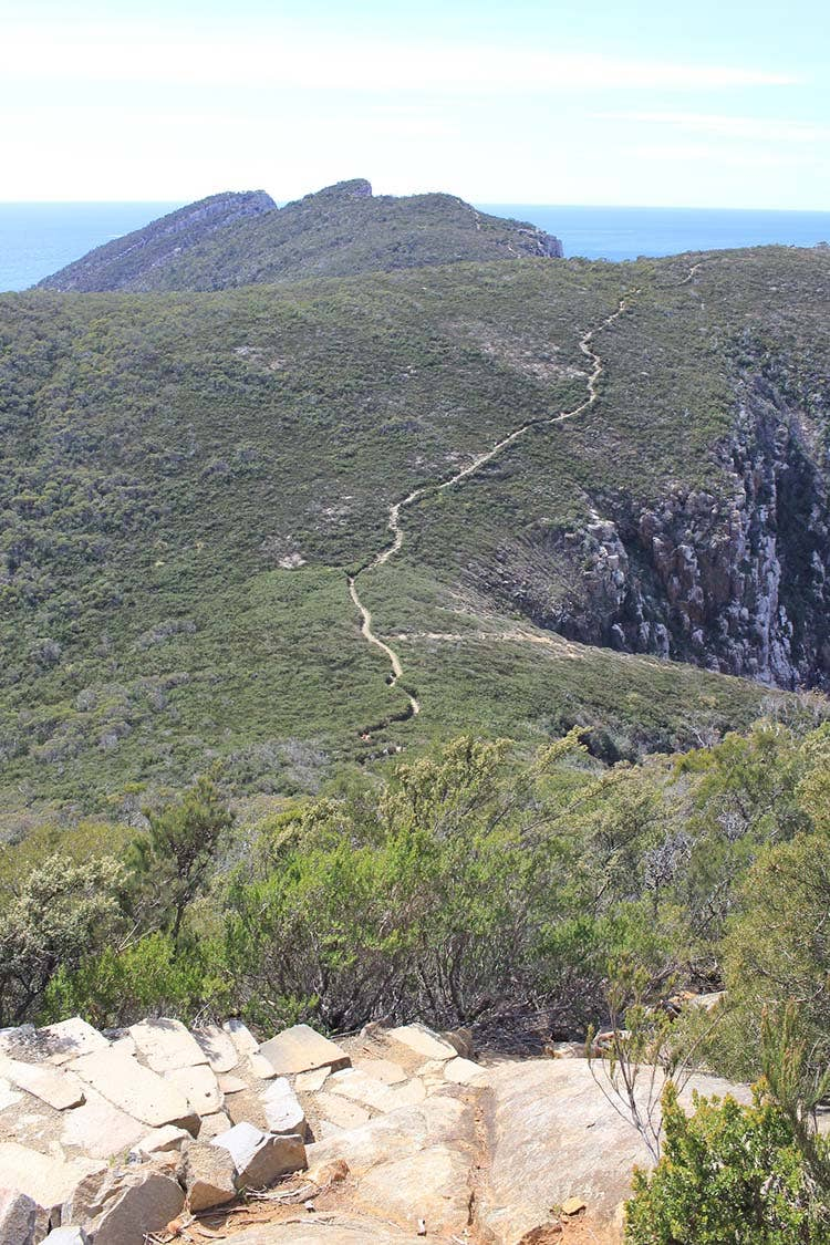 Three capes track weaving up the mountain.