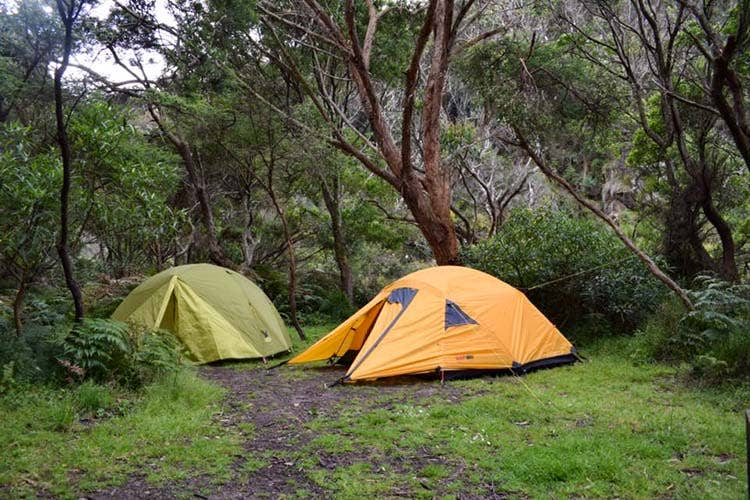 Camping along the Great Ocean Road