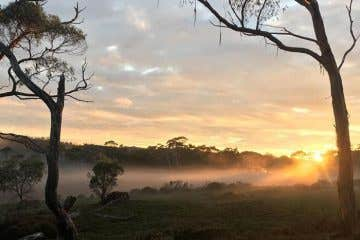 Sunrise over the Tasmanian wilderness on The Overland Track
