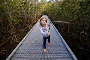 Little girl running with a stick on a boardwalk going through the mangroves.