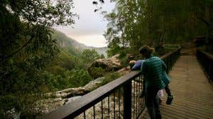 Mother and son looking out over a bushy valley from a board walk.