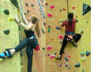 Climbers on a wall in an Indoor climbing gym