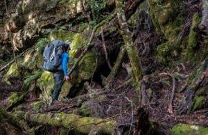 Hiker in the Tasmanian wilderness