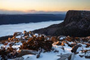 Tasmanian wilderness in winter