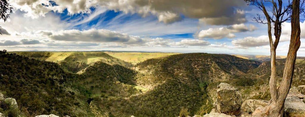 Werribee Gorge Circuit Walk. Photograph: All Trails