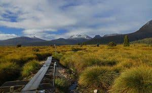 Hiking along the Overland Track in Tasmania