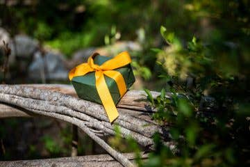 Bush gift ideas for hikers and people who love the outdoors. Christmas gift in the Australian bush